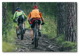 two cyclist mountainbiker during a race in the woods